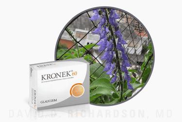 Forskolin (Coleus) for Glaucoma